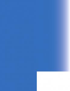 pinna blu vtenext