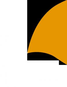 pinna arancio vtenext 2
