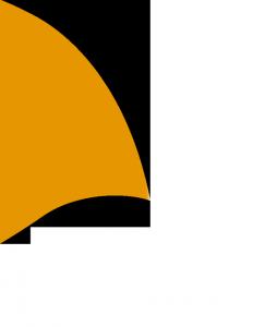 pinna arancione crm